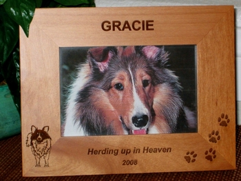 Sheltie Picture Frame - Personalized Frame - Laser Engraved Sheltie
