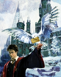 Harry and Hedwig on Canvas