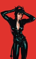 Meow! - Catwoman - Warner Bros. By Clampett Studios