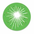 DAZZLE STAR GREEN coasters <br> box of 12