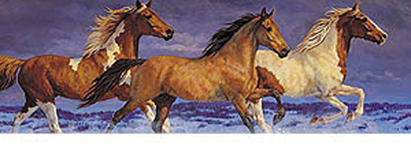 Horses Freedom Rear Window Decal