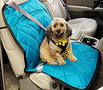 Pet Travel Accessories