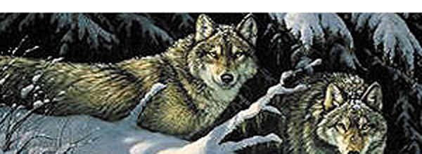 Wolves - Black Timber Rear Window Decal