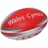 Wales CCC Ball