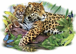 Leopard Mom and Cub Plus Size & Supersize T-Shirts S M L XL 2xl 3xl 4x 5x 6x 7x 8x (Lights Only)
