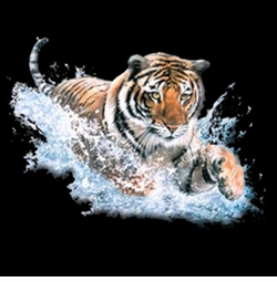 NEW! 3D Tiger Splash Plus Size & Supersize T-Shirts S M L XL 2x 3x 4x 5x 6x 7x 8x (All Colors)