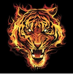 NEW! Flaming Tiger Plus Size & Supersize T-Shirts S M L XL 2x 3x 4x 5x 6x 7x 8x (Darks Only)