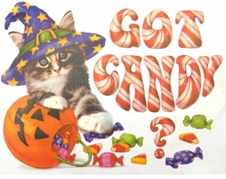 Got Candy Halloween Kitty Plus Size & Supersize T-Shirts S M L XL 2x 3x 4x 5x 6x 7x 8x (Lights Only)