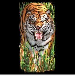 NEW! Prowling Tiger in Grass Plus Size & Supersize T-Shirts S M L XL 2x 3x 4x 5x 6x 7x 8x (All Colors)