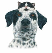SALE! Cute Buddies Plus Size & Supersize Dog Cat T-Shirts S M L XL 2x 3x 4x 5x 6x 7x 8x (Lights Only)