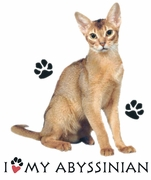 SALE! I Love My Abyssinian Cat Plus Size & Supersize T-Shirts S M L XL 2xl 3xl 4x 5x 6x 7x 8x (Lights Only)