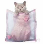 SALE! Pocket Kitten! Barnaby Plus Size & Supersize T-Shirts S M L XL 2x 3x 4x 5x 6x 7x 8x (Lights Only)