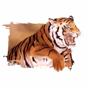 SALE! Pouncing Tiger All Plus Size & Supersize T-Shirts L XL 1 2x 3x 4x 5x 6x 7x 8x