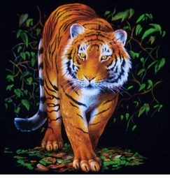 Beautiful Tiger in the Brush Plus Size & Supersize Printed T-Shirts S M L XL 1x 2x 3x 4x 5x 6x 7x 8x (Most Colors)