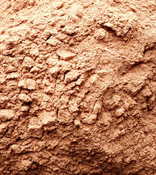 Cassia Cinnamon (Powder) - Indonensia