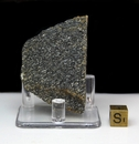 Acasta Gneiss Large - New!