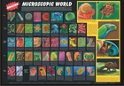Amazing Microscopic World - Biology Poster