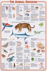 Animal Kingdom Science Poster
