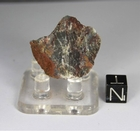 Apex Chert for Sale
