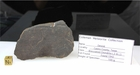 Dimmit Meteorite for Sale