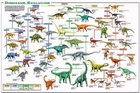 Dinosaur Evolution Science Poster