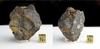 Fig Tree Chert Stromatolite - New!
