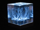 Lichtenberg Figure with Lighted Stand