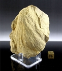 Shatter Cone from Glover Bluff, Wisconsin - New!
