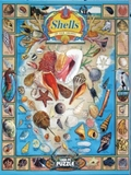 Shells of Our Shores