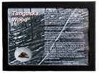 Authentic Tunguska Wood Display for Sale