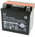 12Volt 4.5AH Battery (104-14)