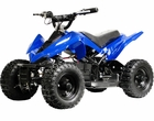 MotoTec 350 Watt 24 Volt Electric ATV -  Quad (MT-ATV)