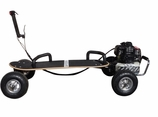 49cc Gas Powered 4 Wheel Skate-Board (2013 Model)