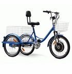 EW-88 450 Watt 48V Electric Trike