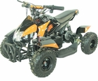 GOBI 500 Watt 36 Volt Electric ATV W/Reverse