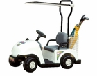 Kids Junior Golf Cart 6v by NPL