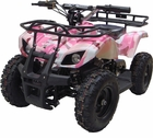 Sonora 350 Watt 24 Volt Electric ATV W/Reverse