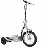 TRX 300 Watt 36 Volt, Electric Scooter - Personal Transporter (TRX-1050)