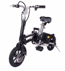 X-Treme XB-200Li Folding Electric Bike, LiPo4 Batteries 300 Watts Hub Motor