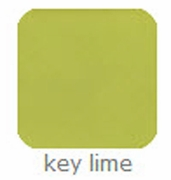 Key Lime 12x12 Adhesive-Backed Cardstock