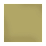 Sheer Metallic 12x12 Textured Cardstock - Gold