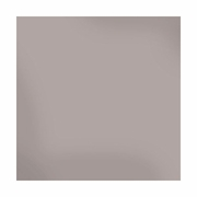 Sheer Metallic 12x12 Textured Cardstock - Silver