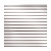 Sheer Metallic - Silver Stripe