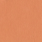 Apricot Canvas 12 X 12 Bazzill Cardstock (Orange)