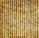 Bamboo 12 x 12 Paper