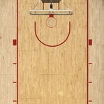 Basketball: Nothing But Net 12 x 12 Paper