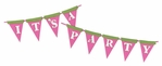 Birthday: It's A Party Pink Border Laser Die Cut