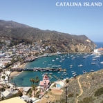 California: Catalina Island 12 x 12 Paper