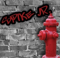 Custom Graffiti and Fire Hydrant 12 x 12 Paper