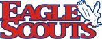 Eagle Scout Die Cut